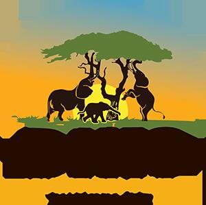 Biko-Adventures Logo